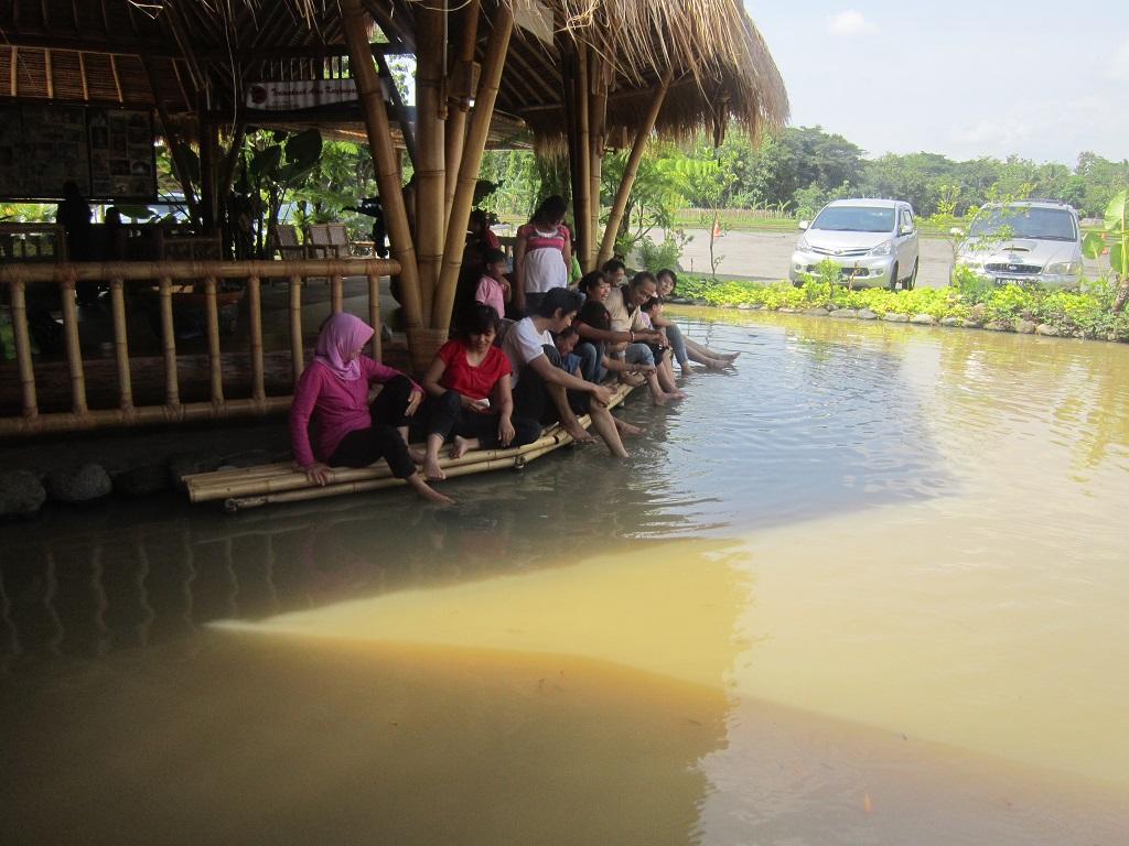 pengunjung bisa menikmati fish spa juga.