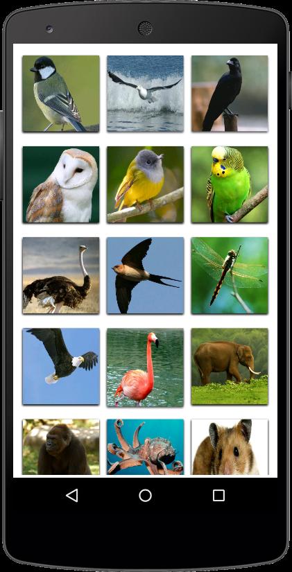 Aplikasi Nama Binatang di Android